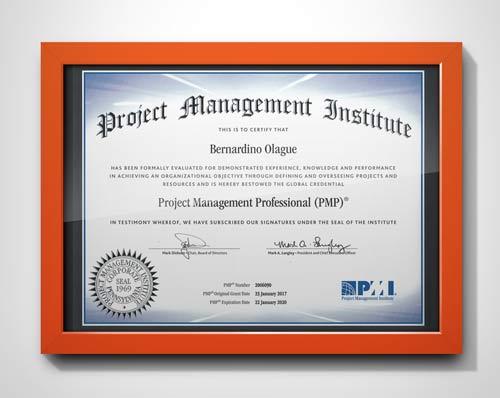 PMI Project Management Professional